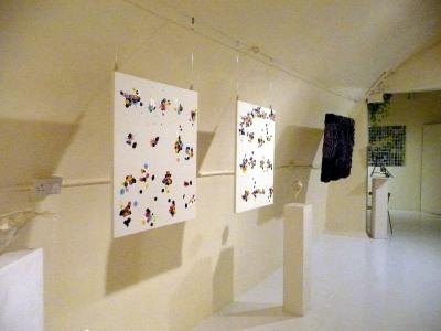 Installation View 15